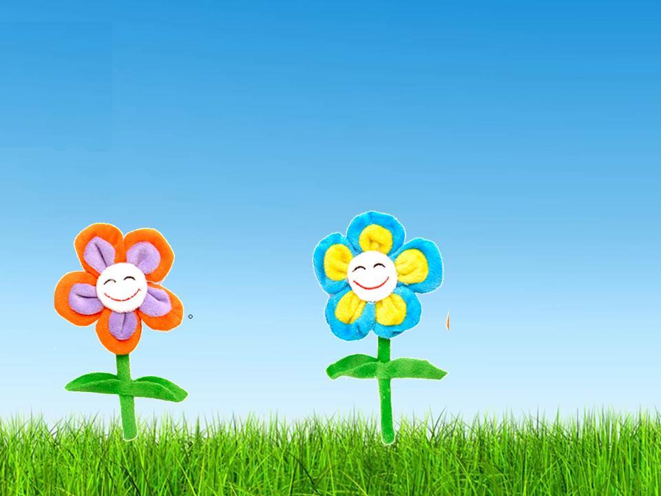 o nascimento da flor