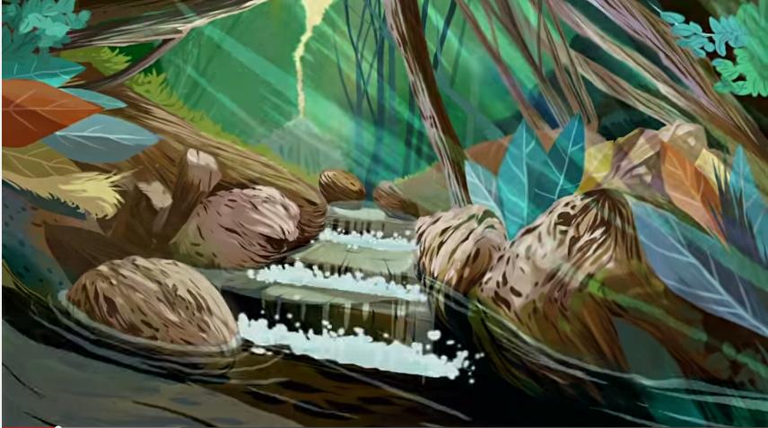 O enigma da água